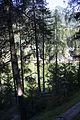 Scuol - panoramio (221).jpg