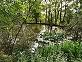 See Roßbrunnen.jpg