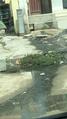 Sewage water.png