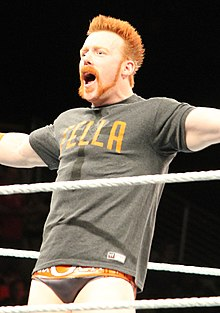 Sheamus April 2014.jpg