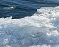 Shore Ice, Duluth 1 8 18 -winter -lakesuperior (25715064688).jpg
