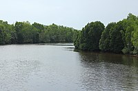 Sihanoukville Province, Stueng Hav - river 04.jpg