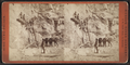 Sing Sing Prison. (Prisoners at work at the quarries.), from Robert N. Dennis collection of stereoscopic views 2.png