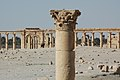 Site of Palmyra-107735.jpg