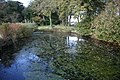 Small Pond - geograph.org.uk - 1032789.jpg
