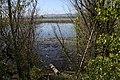 Smith & Bybee Lakes (13764799494).jpg