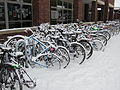 Snow at Reed College, Portland (2014) - 10.JPG