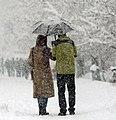 Snowy and rainy day of Hamadan - 7 December 2017 01.jpg