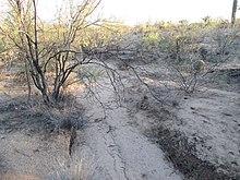 Arroyo (creek) - Wikipedia