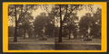 South Broad Street, west. Savannah, Ga, by J. A. Palmer.png