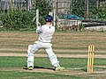 Southwater CC v. Chichester Priory Park CC at Southwater, West Sussex, England 059.jpg