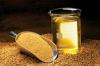 Soybean oil - Soybean oil, meal and beans