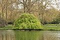 Spring in London (6967783016).jpg