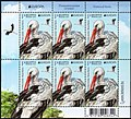 Stamp of Belarus - 2019 - Colnect 875680 - White Stork Ciconia ciconia.jpeg