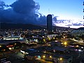 Starr-130717-2706-Ficus benjamina-habitat with sunrise lights-Ala Moana Hotel-Oahu (25102412342).jpg
