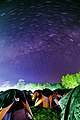 Starry Night at Phu Kradueng National Park 01.jpg