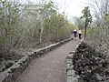 Start of the Walking path to Tortuga Bay Galapagos photo by Alvaro Sevilla Design.JPG