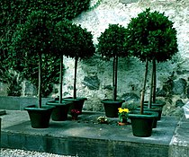 Stefan George Grave.jpg