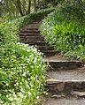 Steps - panoramio (4).jpg