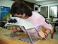 Stereoskopija aerosnimaka.JPG