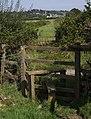Stiles on Hatherleigh Footpath 3a - geograph.org.uk - 537499.jpg