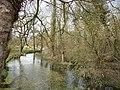 Stoke Charity - River Dever - geograph.org.uk - 1766343.jpg