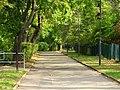 Straße der Jugend Pirna (42731185470).jpg