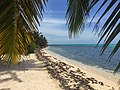 Strand im Lighthouse Reef, Belize (21628200863).jpg