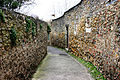 Street - Carcassonne 2014.JPG