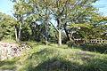 Sumoto Castle in 2013-9-29 No,4.JPG