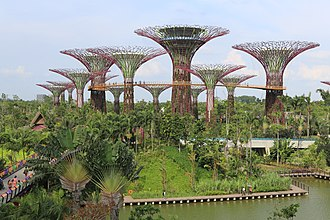 Culture of Singapore - The Supertree Grove at Gardens by the Bay