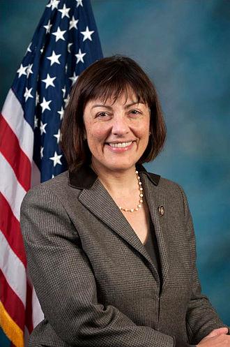 Suzan DelBene - DelBene official portrait for the 113th Congressional session