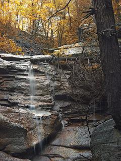 Reilly Township, Schuylkill County, Pennsylvania Township in Pennsylvania, United States