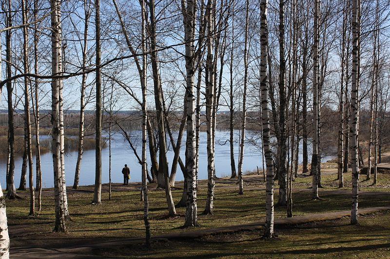 File:Syktyvkar, Komi Republic, Russia - panoramio (18).jpg