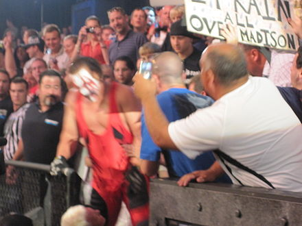 Sting battling Mr. Anderson in the crowd at Slammiversary IX TNA Slammiversary Sting vs. Mr. Anderson Sting crown 1.jpg