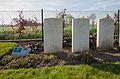 Talana Farm Cemetery-2.JPG