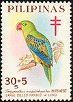 Tanygnathus megalorynchos 1967 stamp of the Philippines.jpg
