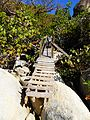 The Baths, Virgin Gorda — small footbridge.JPG