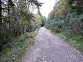 The Great Glen Way - geograph.org.uk - 582425.jpg