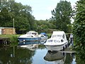 The Great Stour, Fordwich - geograph.org.uk - 1351280.jpg