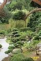 The Japanese garden, Jarków (32138362745).jpg