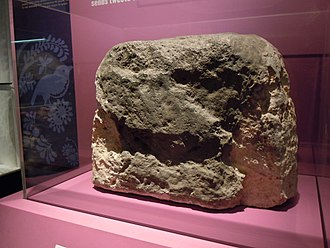 London Stone - London Stone on temporary display at the Museum of London