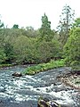 The River Livet - geograph.org.uk - 453530.jpg