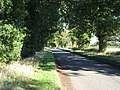 The Road To Cranworth - geograph.org.uk - 293303.jpg