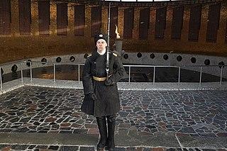 Volgograd Honour Guard Ceremonial unit of the Russian armed forces