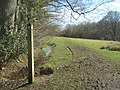 The Sussex Border Path and Wealdway join at Clayton's Wood - geograph.org.uk - 1735561.jpg