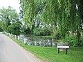 The Village Pond - geograph.org.uk - 183256.jpg