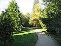 Through the trees - geograph.org.uk - 1079324.jpg