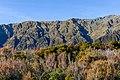 Toaroha Range from Yeats Ridge, West Coast, New Zealand.jpg