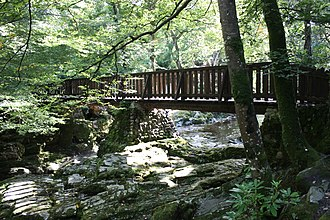 Tollymore Forest Park - A wooden footbridge crossing the Shimna River in Tollymore Forest Park